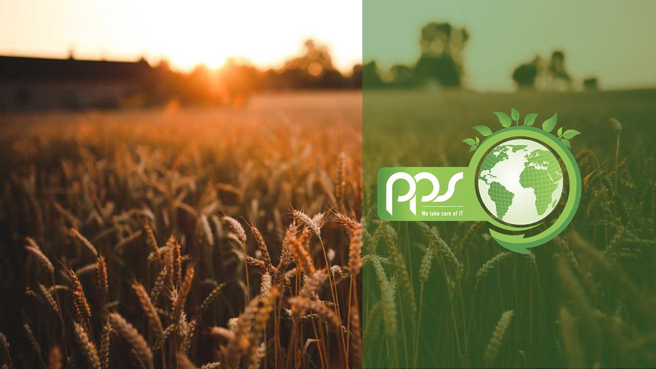 Blockchain nell'agroalimentare